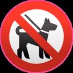 C животными запрещено