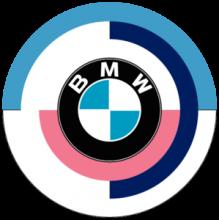 BMW Logo Vintage